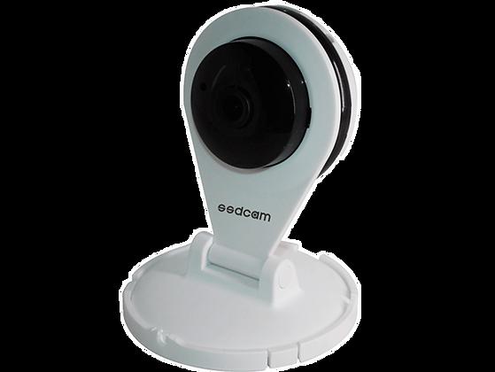 Внутренняя IP видеокамера IP-219W