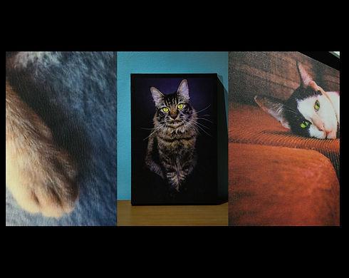 New Phototastic Collage 3.jpg