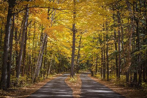 Door County Fall 2