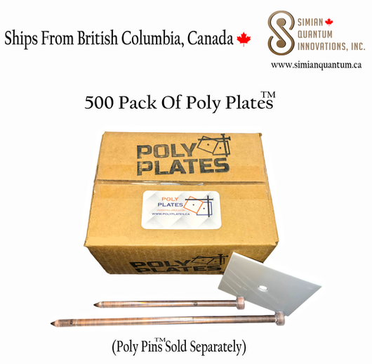 500 PACK POLY PLATES.png