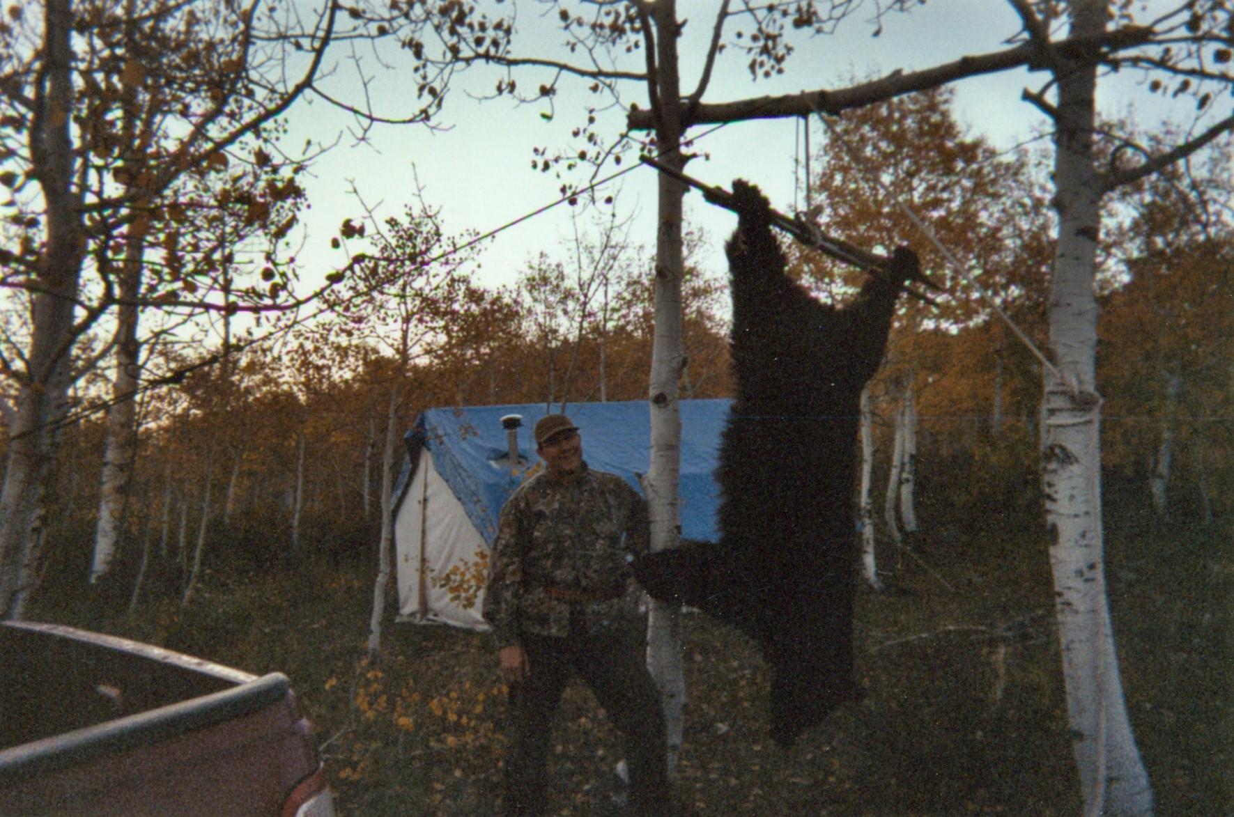 Wild Mountain Bear