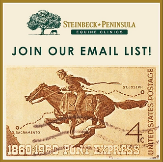 Join Our Email List.png