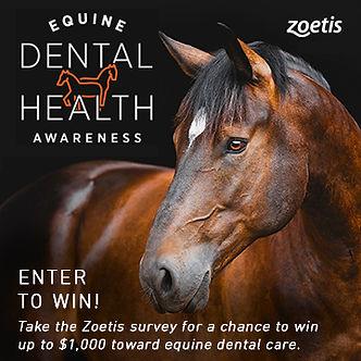 Zoetis Dental Awareness Sweepstakes Soci