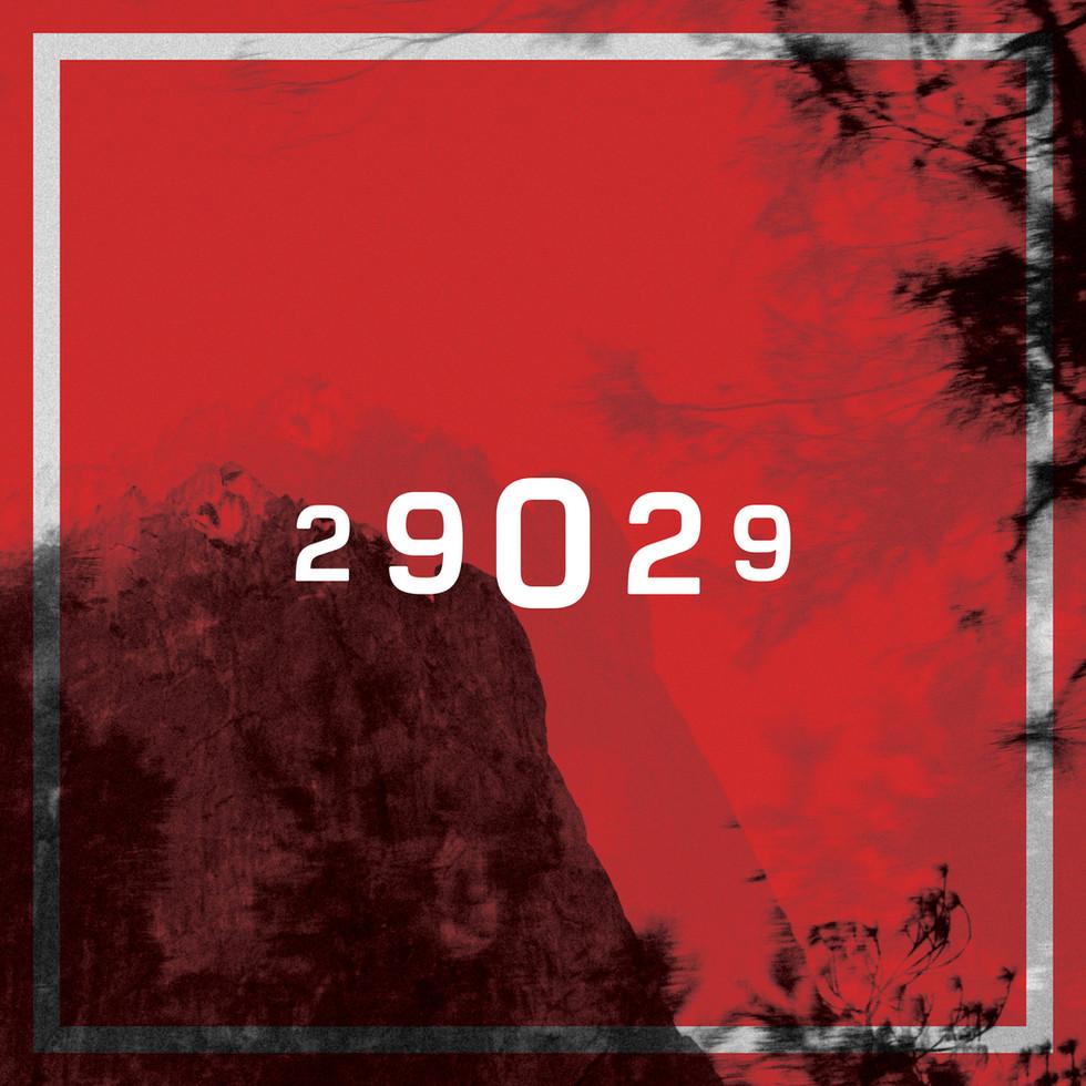 29029 | Social Campaign