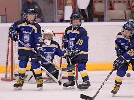 Prøv hockey - en fantastisk barneidrett!