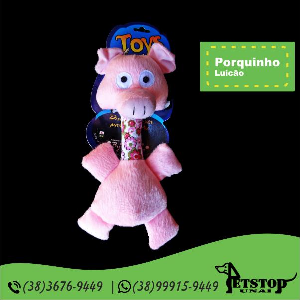 porquinho_c_pescoço_luicao