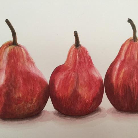 Art display / Denise Pocock