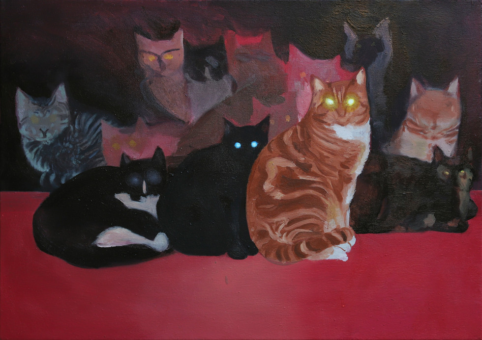 Gang Notturna, 2019, oil on canvas, 50x7