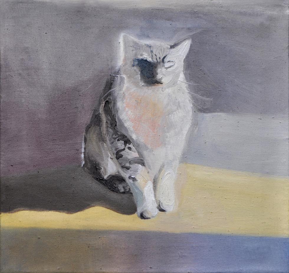 Morbido e perfido, 2017, oil on canvas, 40x40 cm, Private Collection