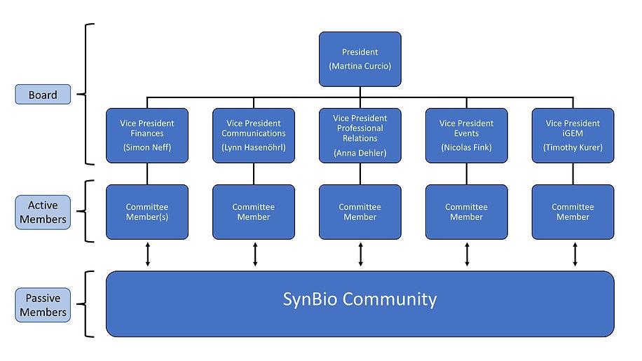 SynBio_NewStr.jpg