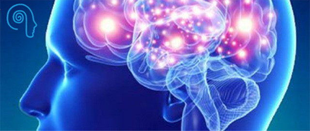 Neuroscience In Business- The power of Marketing