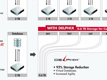 Voice of Delphix Technology