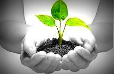 10 motivos por los que invertir en RSE ¿Cuál es el retorno de la inversión?