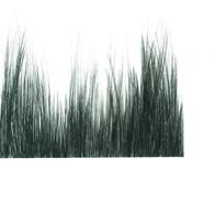Brush Landscape 2