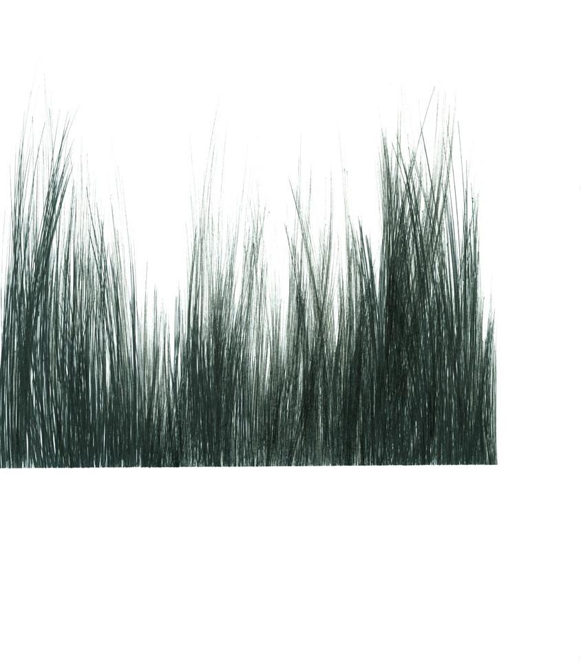 Brush Landscape 6