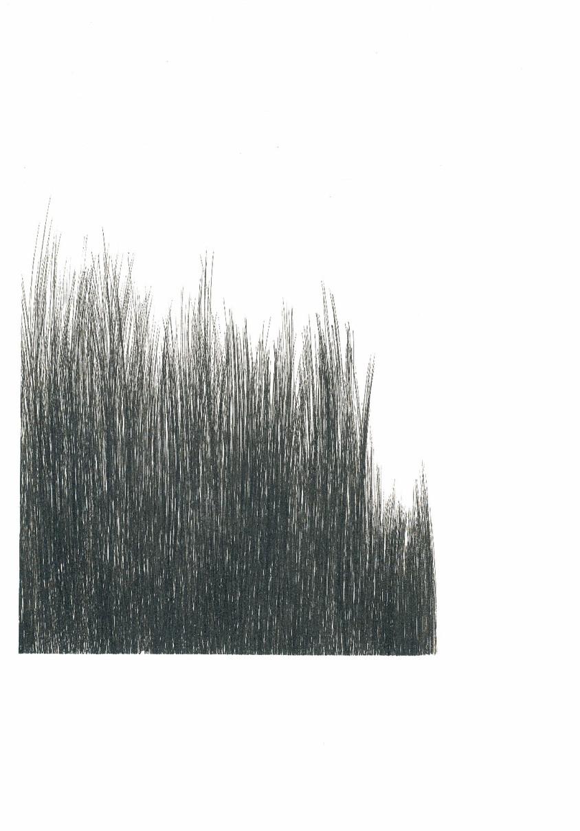 Brush Landscape 4