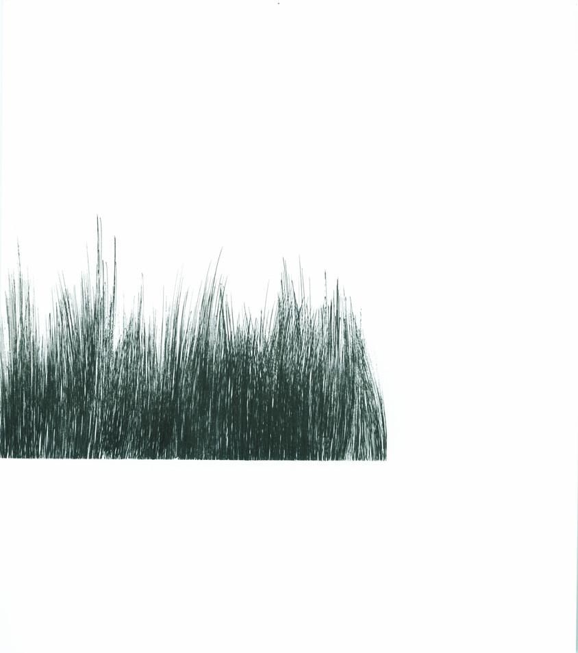 Brush Landscape 7