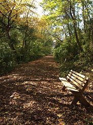 Boy Scout Benches along Trail.jpg