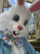 Easter Bunny Face.jpg