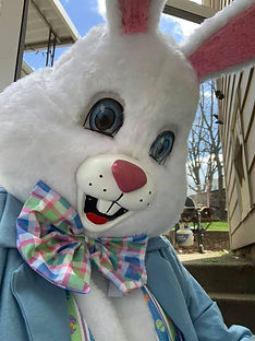 Easter Bunny Face.jpg