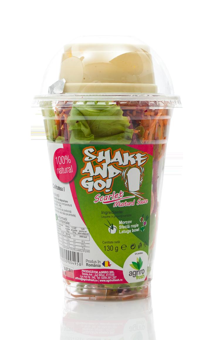 Salate  SHAKE&GO