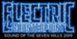 Electric Counterpoint Logo.png