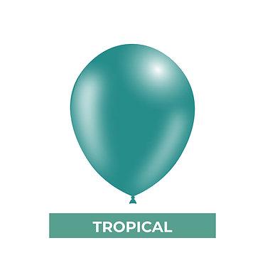 TROPICAL/MP-116