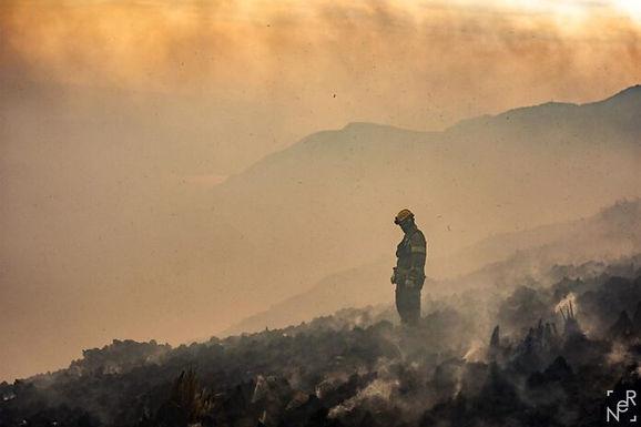 El fuego pone en peligro la reserva de monos carayá