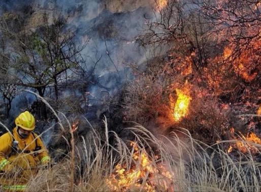 Detienen al sospechoso de iniciar el incendio en Villa Albertina