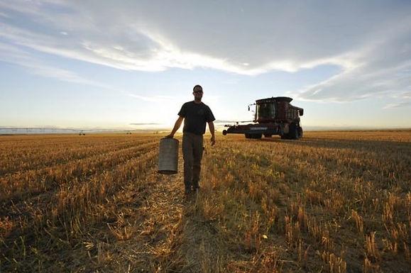Celebración por Día del Trabajador Rural