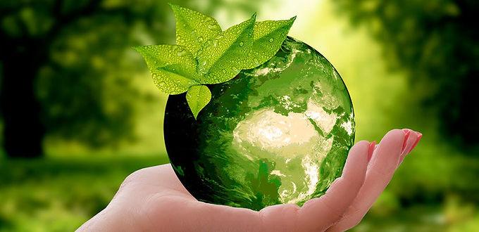 Efemérides: Día Mundial del Medioambiente
