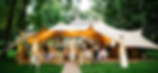 Wedding party Stretch Tent
