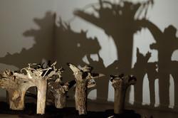CHANGE | Installation, Baumstümpfe, Wolle, Licht | 350 x 250 x 150 cm | 2020