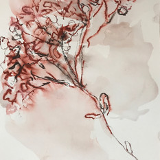 EDITH STEINER, AUFLÖSUNG 3, 32 x 24 cm Serie, Grafit-Kreide / Lavur auf Papier, 2020, 250 Eur
