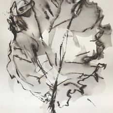EDITH STEINER, VERWANDLUNG 6, Serie,Grafit-Kreide / Lavur auf Papier, 32 x 24 cm, 2020, 250 Eur