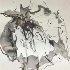 EDITH STEINER, VERWANDLUNG 5, Serie, Grafit-Kreide / Lavur auf Papier, 32 x 24 cm, 2020, 250 Eur
