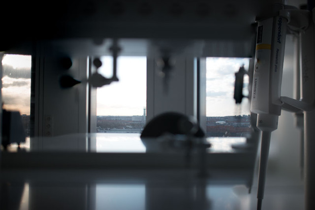 Lundby-Lab---Cardiac-Proteomics-Research