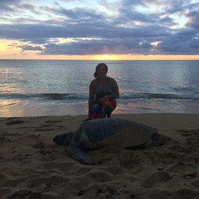 Sunset in Hawaii with a green sea turtle, Robyn's favorite animal