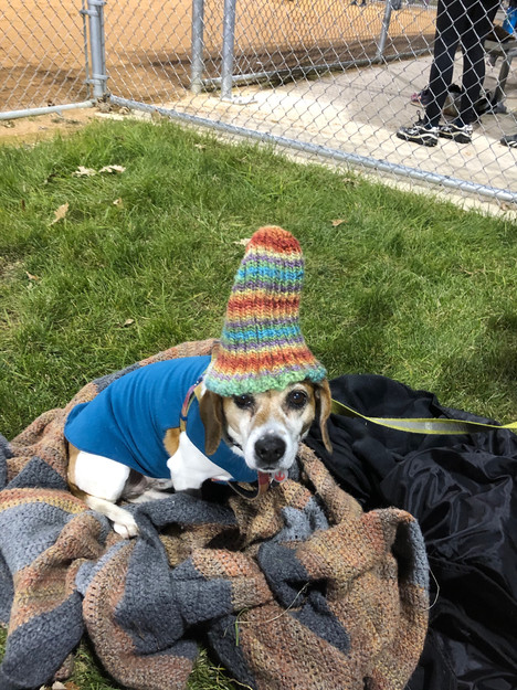 Shiloh borrowed a hat to keep warm at a late fall softball game