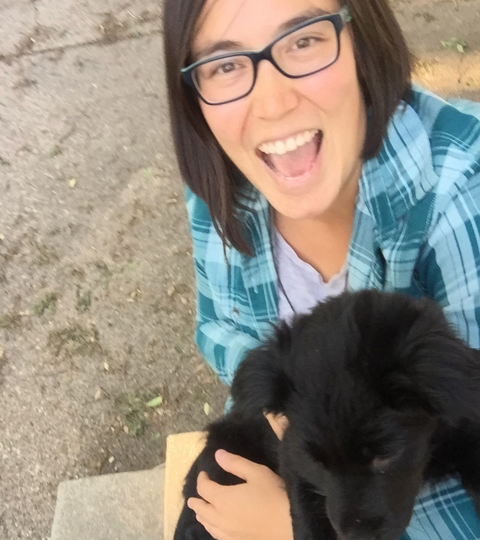 A friend's new puppy!