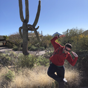 Fawkes' best cactus impression