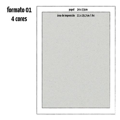 Formato 01 - 04 Cores