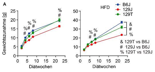 MetaCheck GutFlora, Abnehmen, Darmflora, Darmbakterien, Genetik