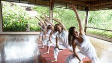 Entrainment Yoga Image 5.jpg