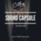 Sound Capsule (3).png