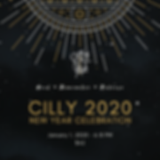 Cilly 2020 New Year celebration (2).png