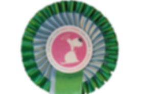 Kennel Club Silver Rosette.jpg