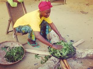 Acceso a dietas más sanas y sostenibles para erradicar la malnutrición en Kingabwa, RDC