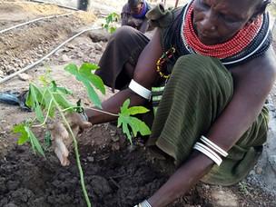 Las comunidades de Nkawasiro y Atapar Down (Kenia) acceden al agua de forma segura