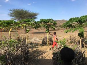 San Jose eskolako hezkuntza- eta elikadura-baldintzak hobetu ditugu Kokuselei eskualdean (Kenya)
